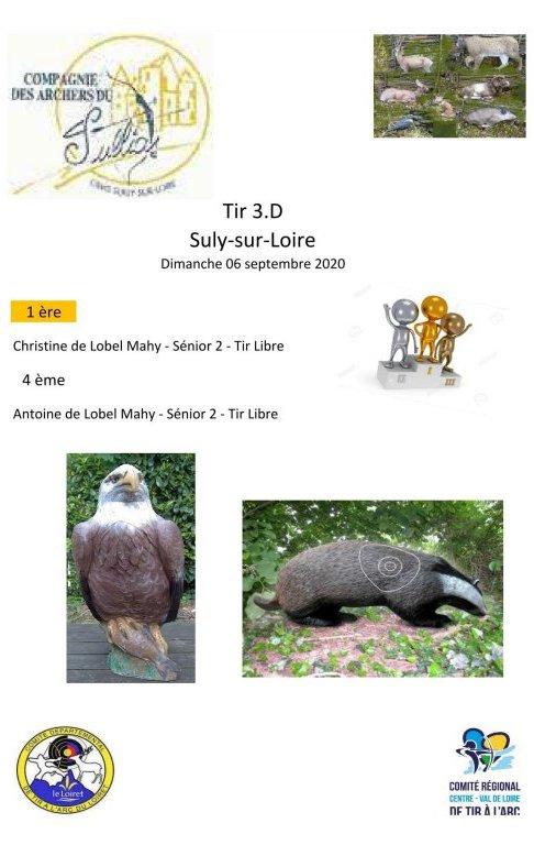 2020-09-06-SULLY-SUR-LOIRE-3D
